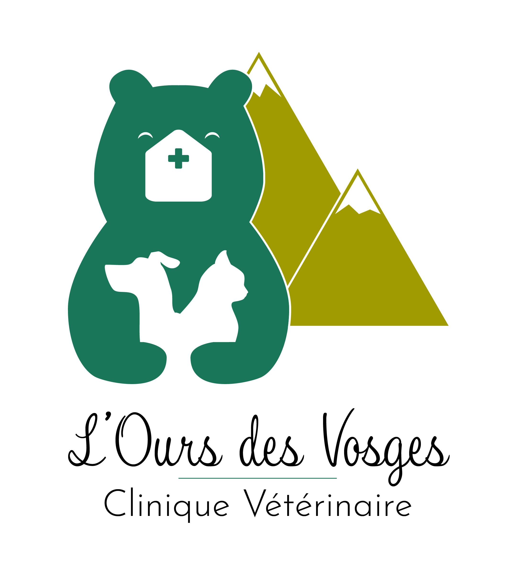 Ours des Vosges